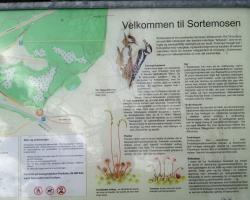 Sortemosen - Allerød