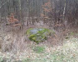 Jonstrupvang - Stor sten