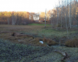 Mølleåen - Klevad Eng