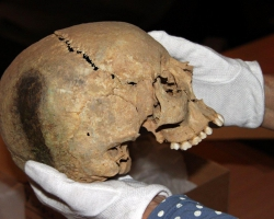 Alugods kranie