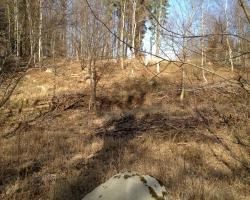 Hareskoven - Hængning